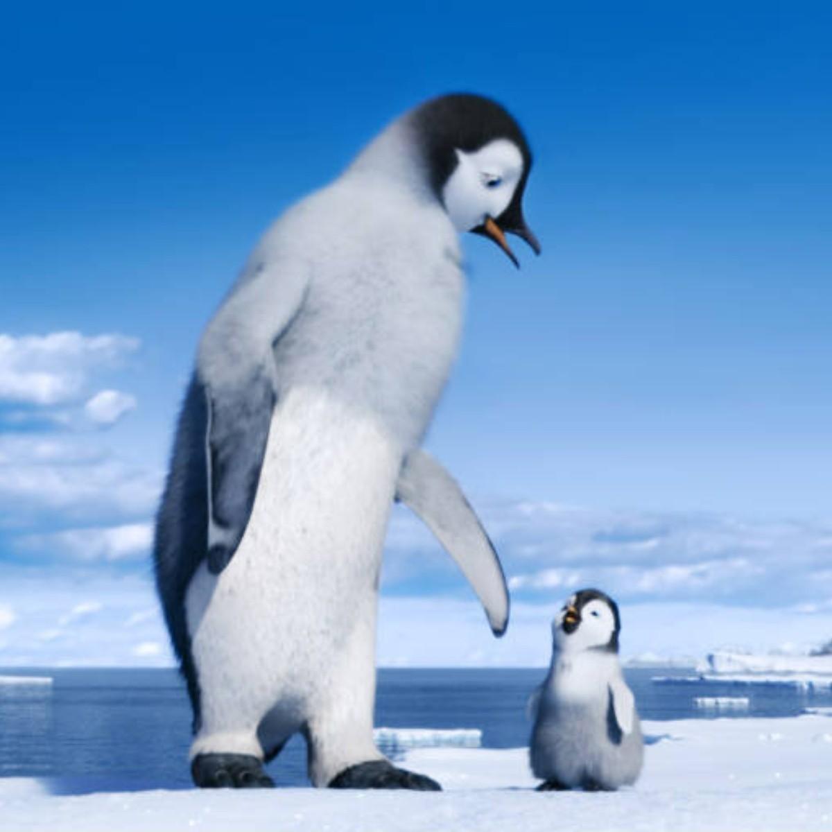 Deja Happy Feet 2 Mensaje Ecologico Y Superviviencia El Informador