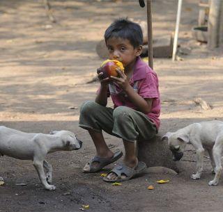 El número de personas con hambre crónica en México llegará a 17 millones, prevé la FAO