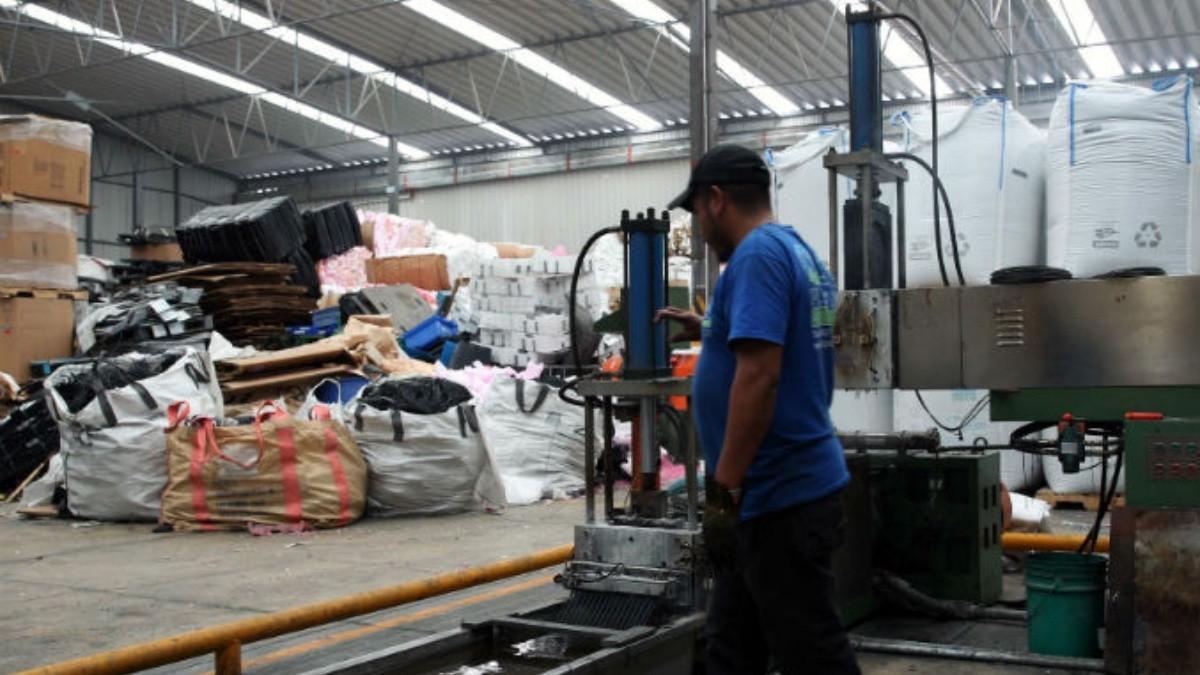 El reciclaje es un negocio de dos mil millones por año | El Informador ::  Noticias de Jalisco, México, Deportes & Entretenimiento