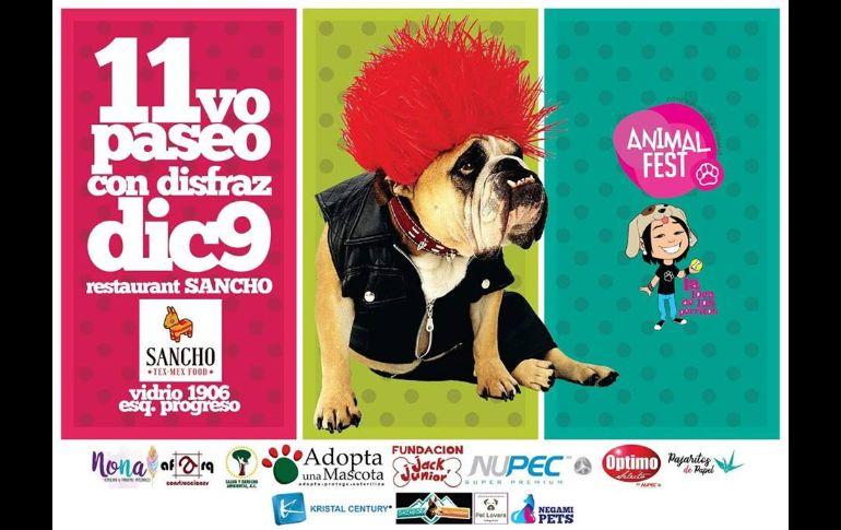 Animal Fest: Paseo con tu mascota