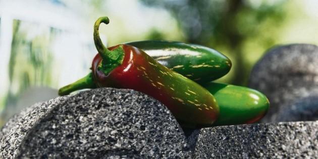 México defiende el chile en acuerdo con Europa