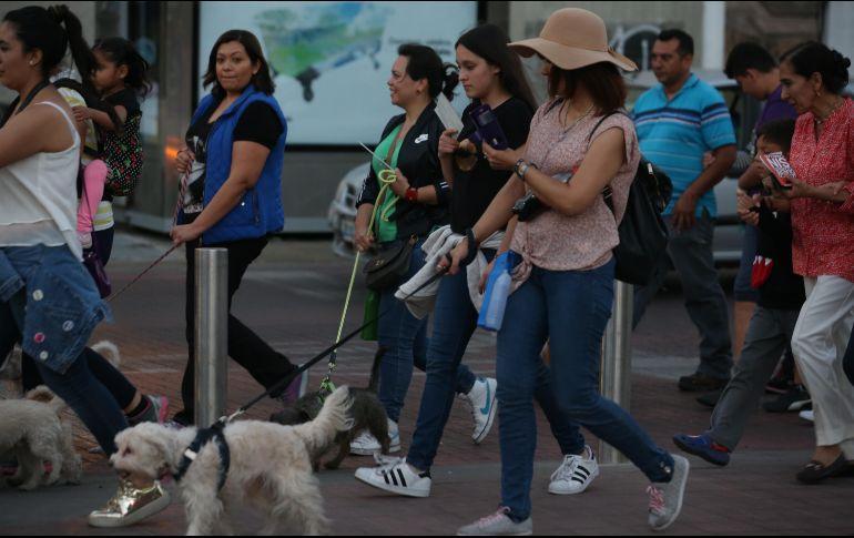 Manifestantes exigirán a las autoridades que cesen las agresiones contra los animales. EL INFORMADOR/ ARCHIVO