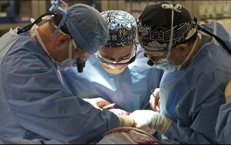 Elaboran ley sobre donación de órganos en México