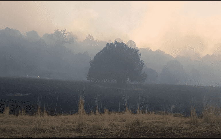 Tremendo e incontrolable incendio forestal en Madera