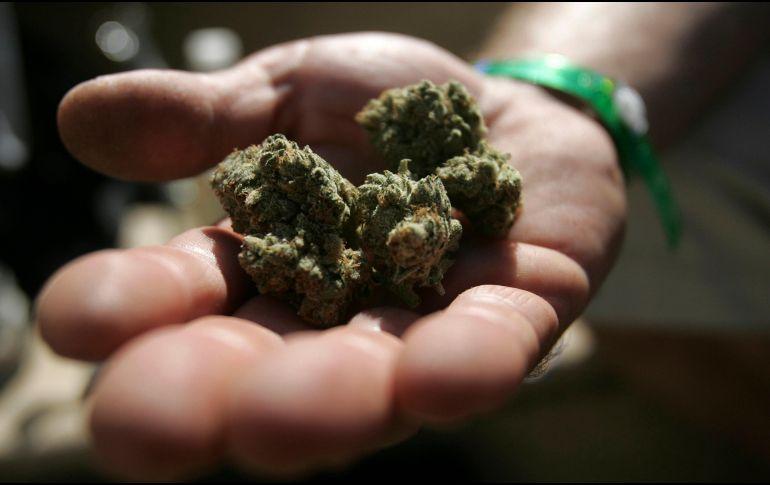 Liberan 19 nuevos productos con cannabis y sus derivados