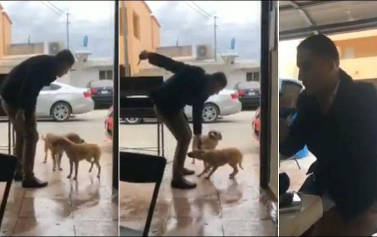 El sujeto llama a un par de perros con navaja en mano y luego de acariciar a uno, apuñala a otro en la espalda y se retira a sentarse en una mesa. TWITTER