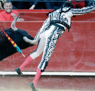 Ponce en La México bilaketarekin bat datozen irudiak