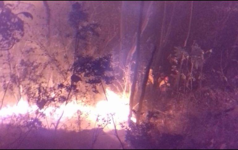 En el lugar trabajan para combatir el incendio 44 brigadistas de diferentes dependencias. ESPECIAL/Bomberos de Zapopan