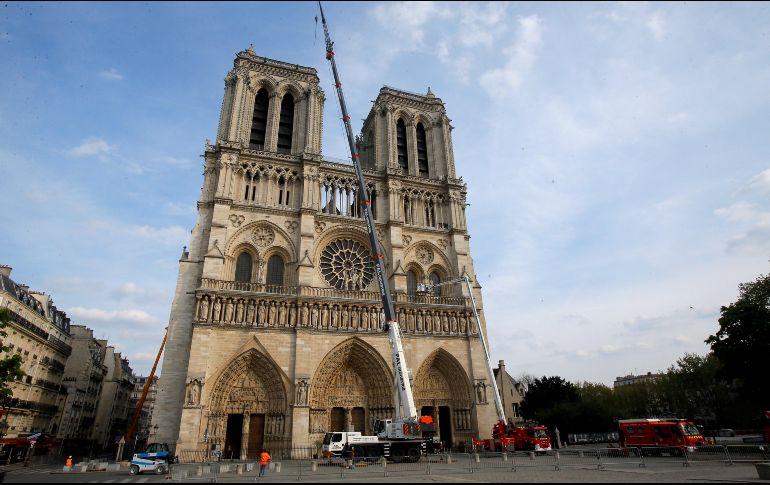 Las abejas de Notre Dame están vivas después del incendio