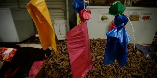 Reglamento antiplástico de Guadalajara y Zapopan incumple Ley de Mejora Regulatoria: Canaco