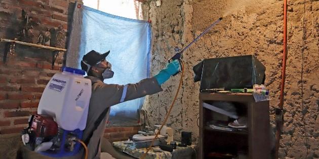 Jalisco sube a segundo lugar en casos de dengue