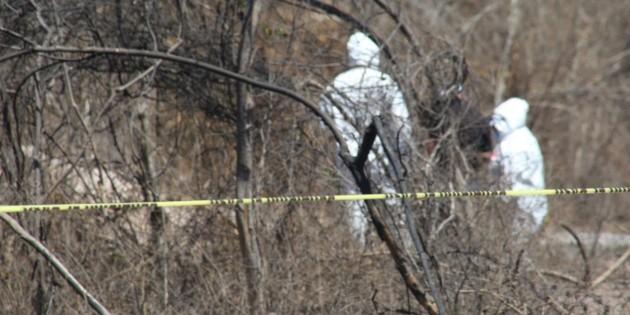 Hallan dos cuerpos más en fosa clandestina de Nayarit; suman cuatro