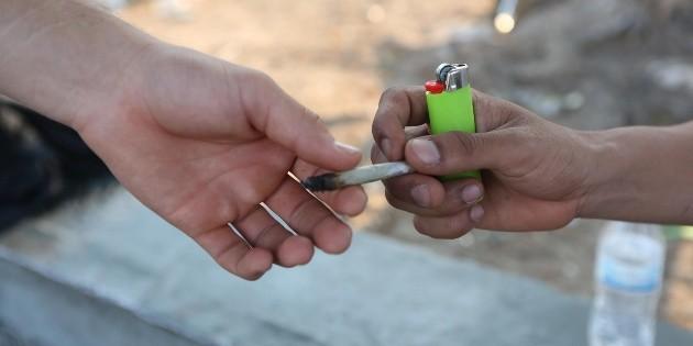 Vicente Fox se asocia en NL para comercializar productos de cannabis