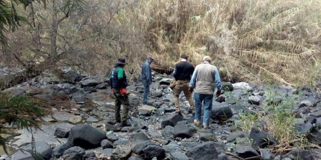 Localizan 59 cuerpos en fosas de Salvatierra, Guanajuato