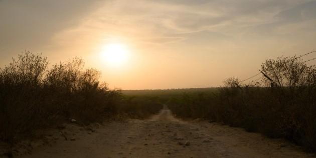 """Frontera USA: """"Me dejaron botado""""; conmueve el relato de niño migrante hallado en desierto"""