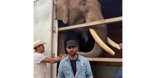 Arturo Islas responde a las críticas sobre la liberación del elefante