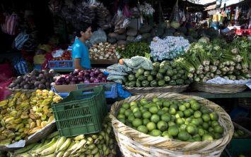 Advierten que los países en desarrollo enfrentan mayores problemas para salir de la crisis económica derivada del coronavirus. EFE/ARCHIVO